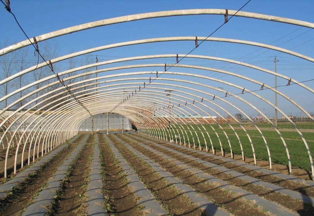 温室大棚骨架/蔬菜大棚/钢管镀塑大棚/钢架大棚/温室大棚厂家