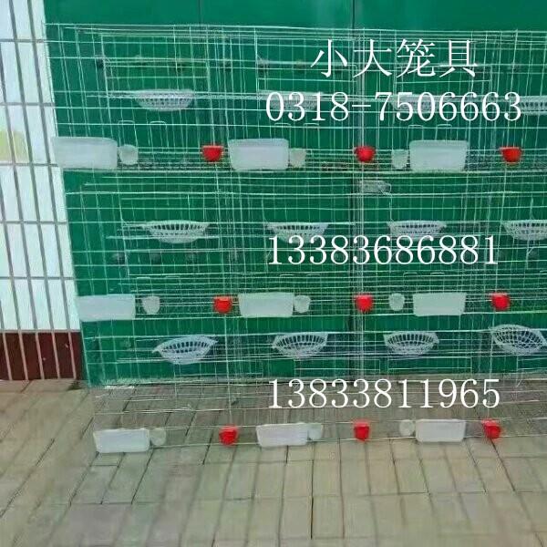 售鸡鸽兔笼 宠物笼 运输笼 鹌鹑笼 鹧鸪笼 鸡笼 鸽笼 兔笼