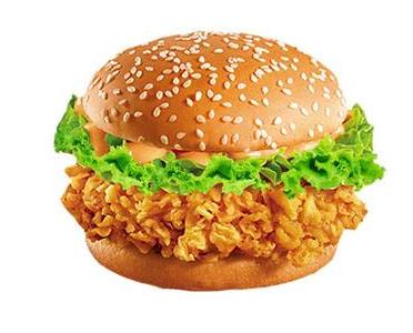 炸鸡汉堡哪里可以学,0基础炸鸡汉堡