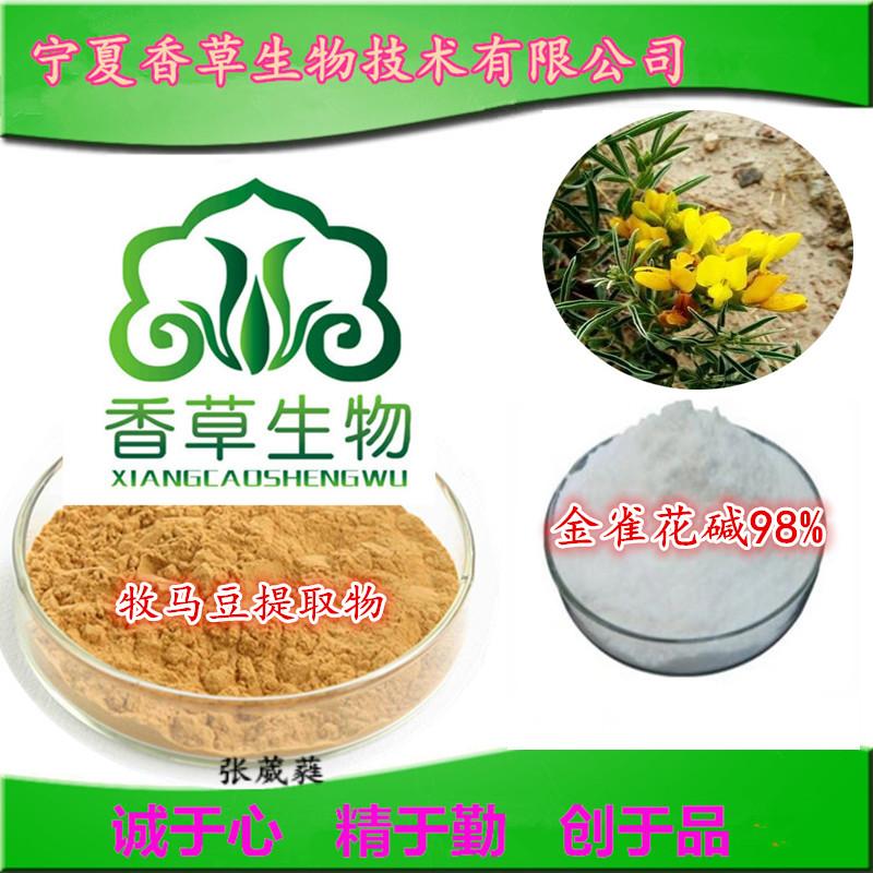 牧马豆提取物 提取液  浸膏 金雀花碱98% 牧马豆速溶