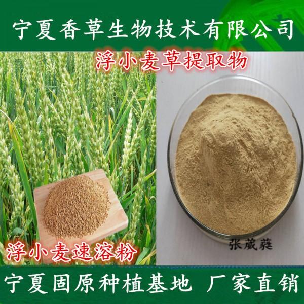浮小麦草提取物 浮小麦草浓缩液 多糖 浮小麦浸膏粉