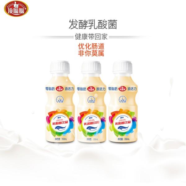 乳酸菌饮料贴牌加工350ml12瓶广东生产厂家