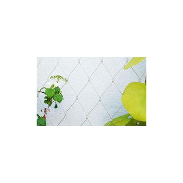 楼房外墙植物攀爬网多少钱一米_登隆丝网
