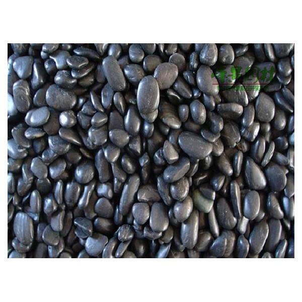 黑色抛光鹅卵石 原生态黑色雨花石 马路铺面装饰用鹅卵石