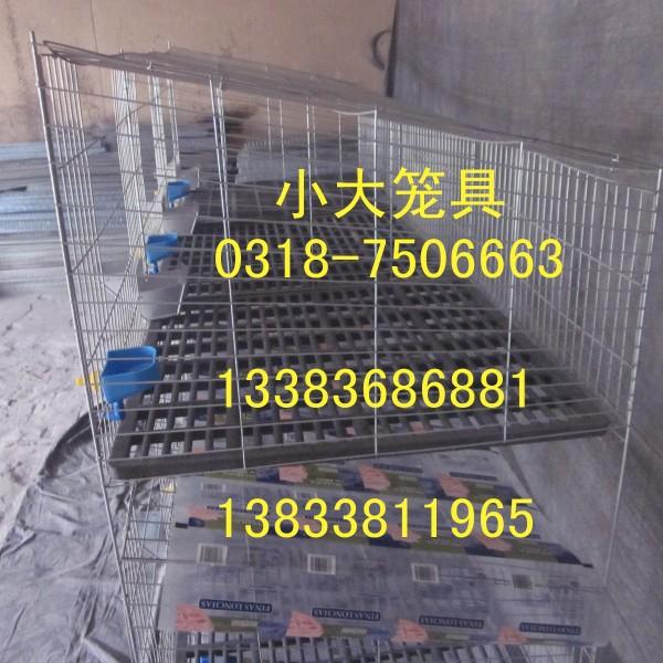 出售鸡鸽兔笼 兔子笼 鸽子笼 鹧鸪笼 鹌鹑笼 雏鸡笼 宠物笼