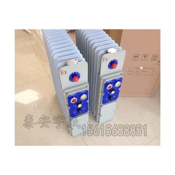 RB-2000/127(A)煤矿用防爆电热取暖器详情介绍