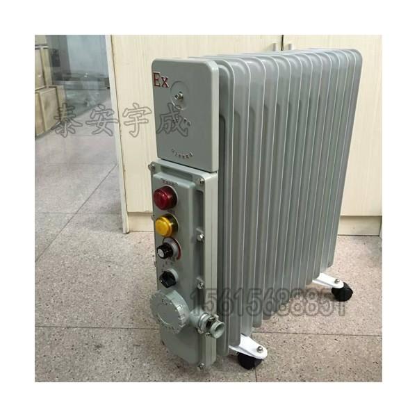 山西矿用RB-2000/127(A)电热取暖器隔爆增安型