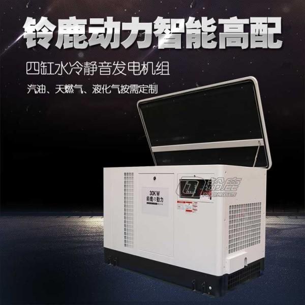 移动式30KW多燃料发电机组