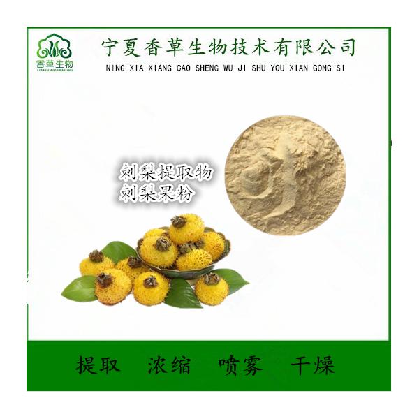 刺梨浓缩汁粉饮品原料 供应刺梨鲜汁 刺梨浓缩粉水溶型