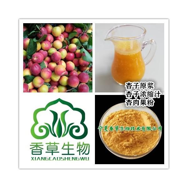 杏子汁粉厂家直销 供应红梅杏粉100目 杏子原浆生产商