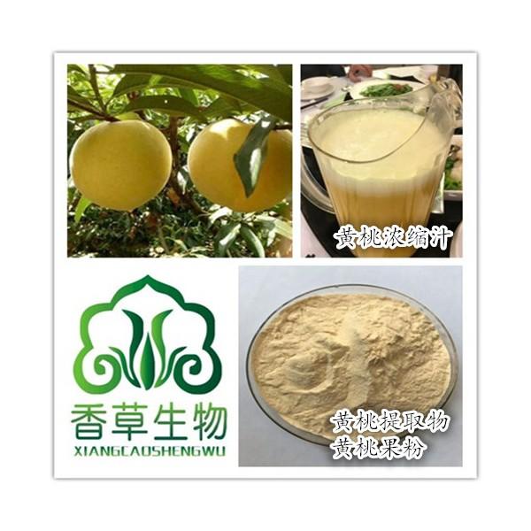 黄桃汁粉饮品原料 供应黄桃鲜汁出厂价 黄桃原浆批发价格