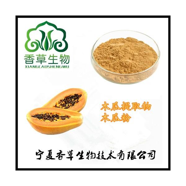 木瓜汁粉厂家直销 供应木瓜浓缩粉100目 木瓜速溶粉出厂价