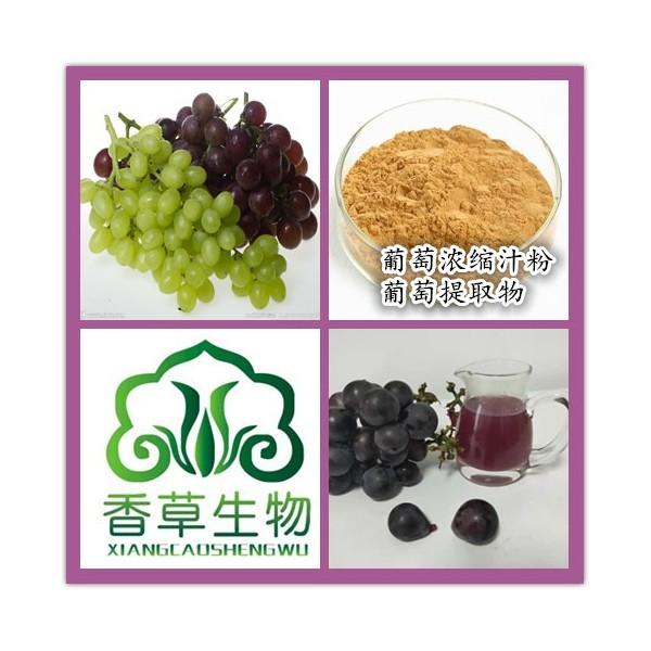 葡萄鲜汁出厂价 供应青葡萄汁粉100目 紫葡萄原浆厂家报价
