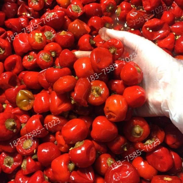 重庆泡菜批发泡菜厂泡椒酸辣椒红灯笼泡椒圆泡椒