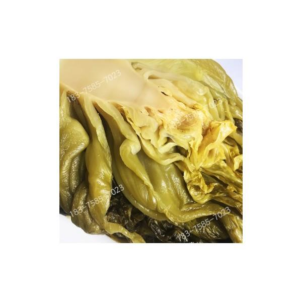 四川泡酸菜鱼泡青菜厂家批发泡菜叶酸菜块菜根