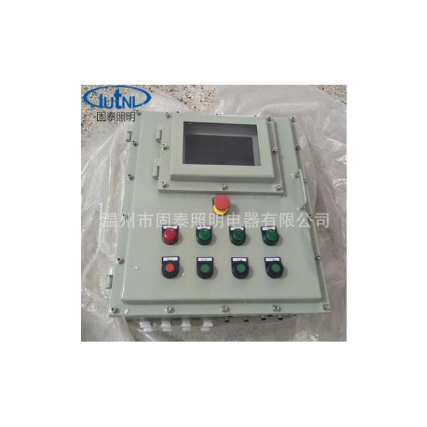 防爆控制箱BXK-T 非标定制 7寸 10寸