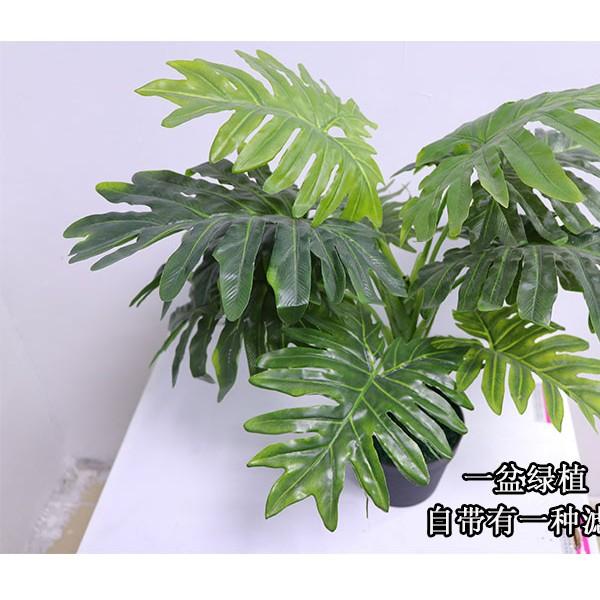 广州圣杰假植物盆栽,仿真植物厂家批发