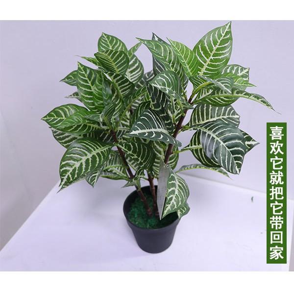 圣杰仿真植物盆栽,仿真植物,厂家直销