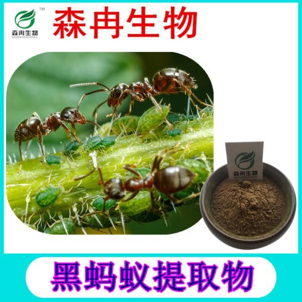 森冉生物黑蚂蚁提取物黑蚂蚁粉现货热销