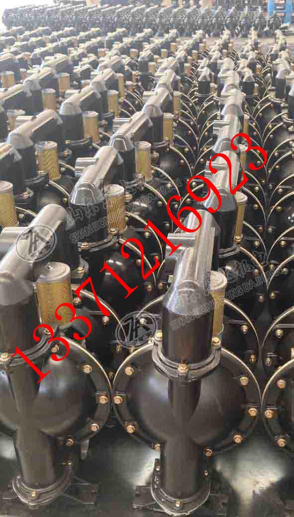 隔膜泵05