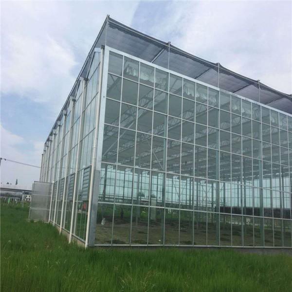 玻璃温室大棚 新型温室建设 温室定制