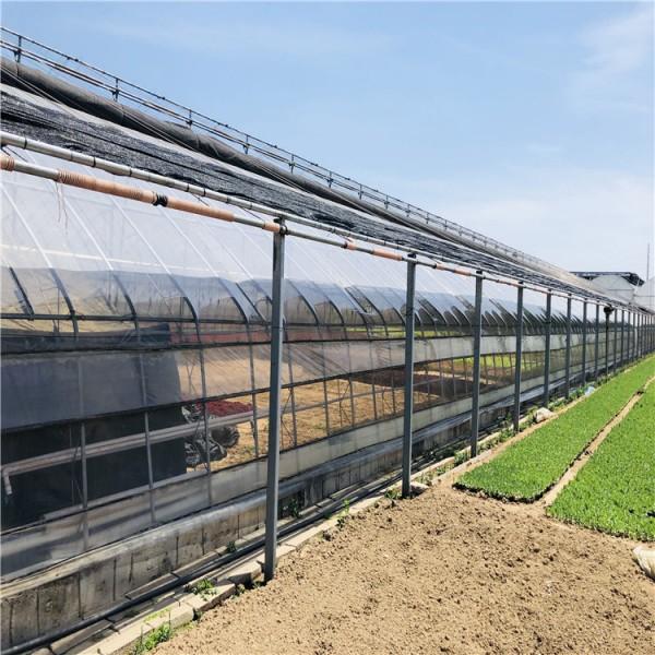 批量供应日光温室大棚骨架 节能日光温室建设