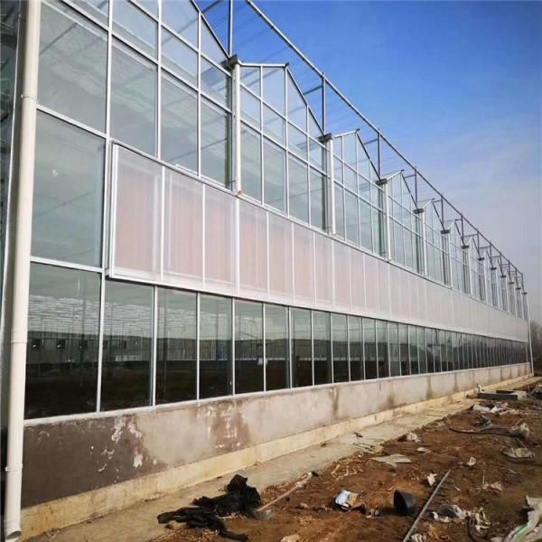 新型玻璃温室 温室大棚 温室配件批发