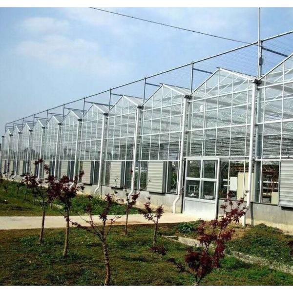 阳光板温室工程 大型阳光板温室工程建设