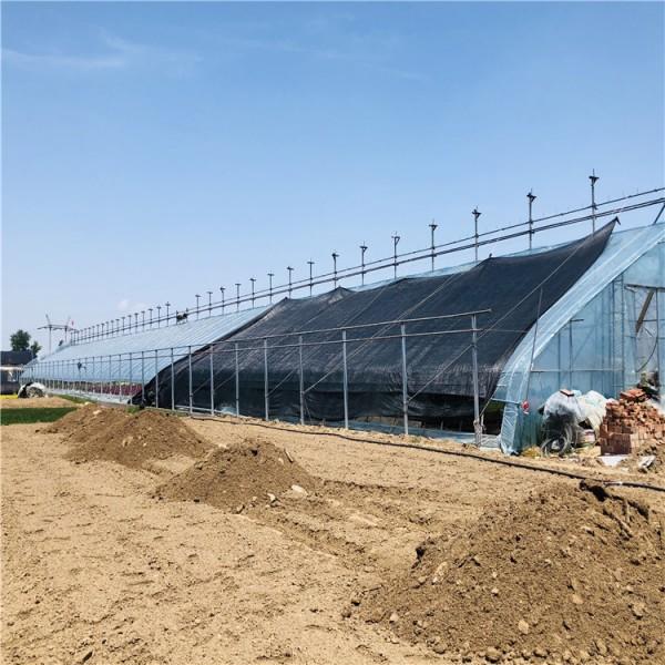 日光温室大棚厂家安装 日光温室大棚