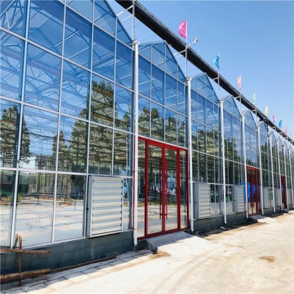 阳光板温室大棚报价预算 PC连栋阳光板温室大棚建设施工