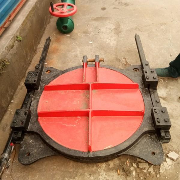 厂家直销 不锈钢拍门 专业定做水利设备