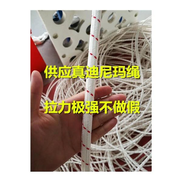 电牵专用杜邦丝绳 迪尼玛绳图片
