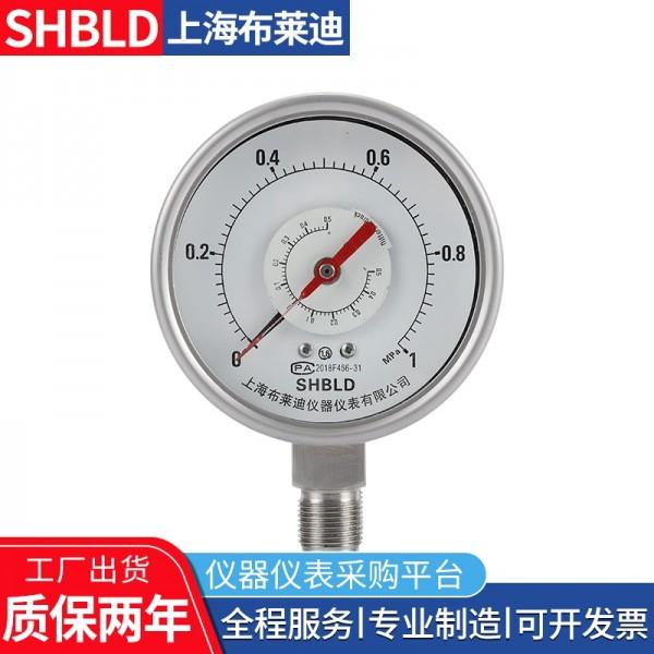 布莱迪YCSH/YCS-100测无腐蚀性非结晶凝固双针压力表