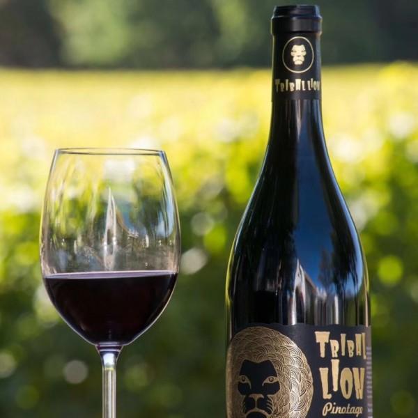 南非金狮小部落皮诺塔吉红葡萄酒