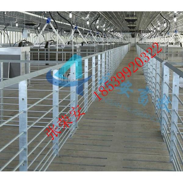 圆钢保育育肥一体化大栏