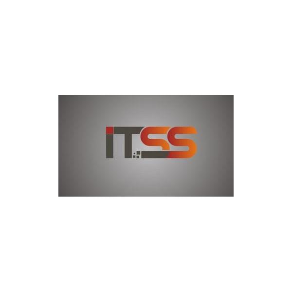 潍坊市ITSS适用于哪些对象