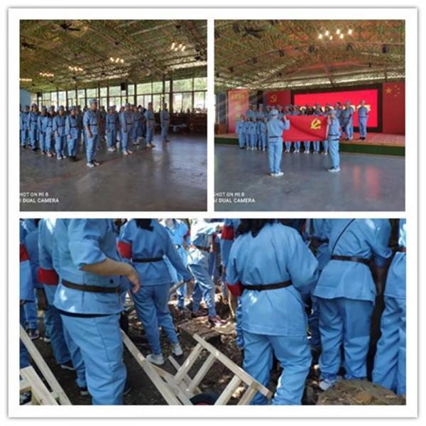 抖音推送蔡甸红色党建有个景区直奔主题