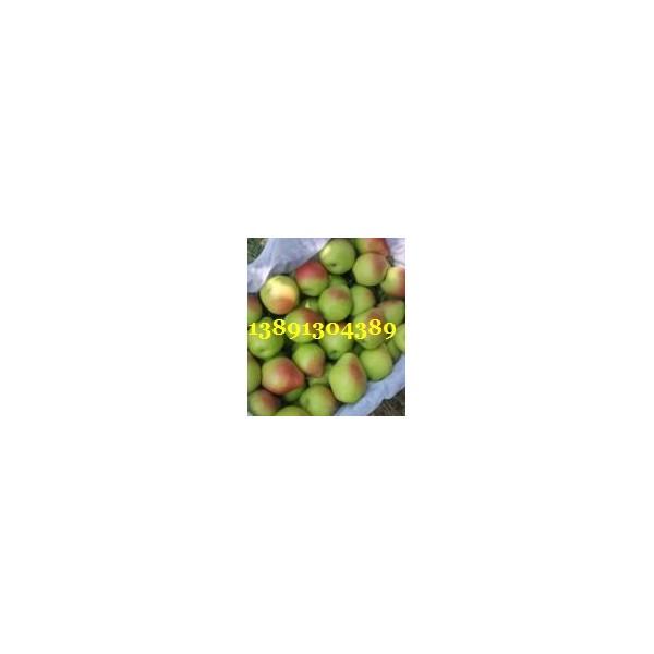 陕西夕阳红梨基地,夕阳红梨产地,半边红梨批发价格