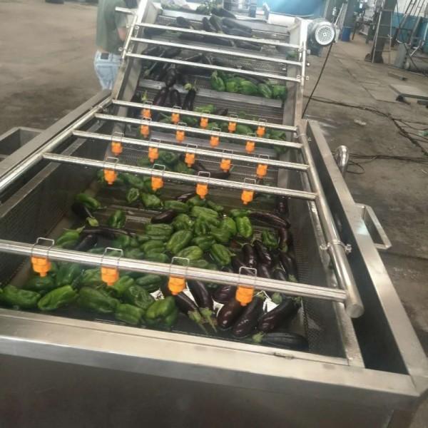 四季豆清洗机 全自动果蔬清洗机设备 云南山东大姜气泡清洗机