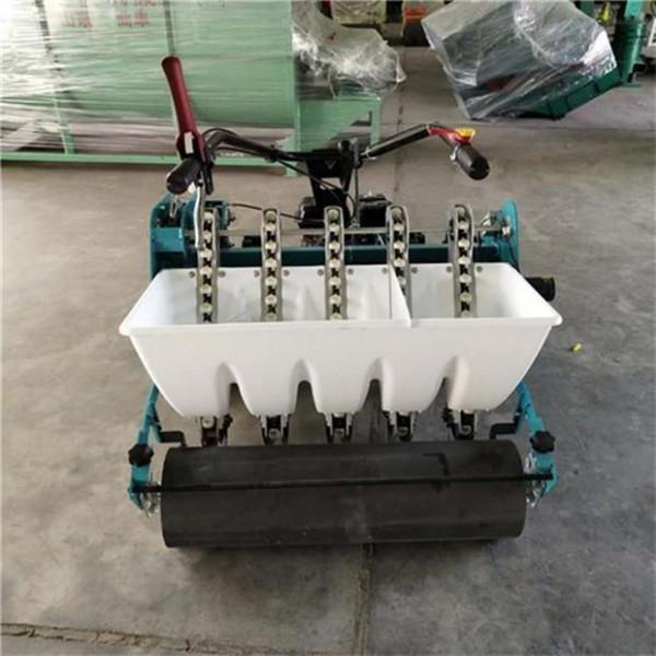汽油机带动大蒜点播机 自走式大蒜播种机 农用大蒜播种机6行