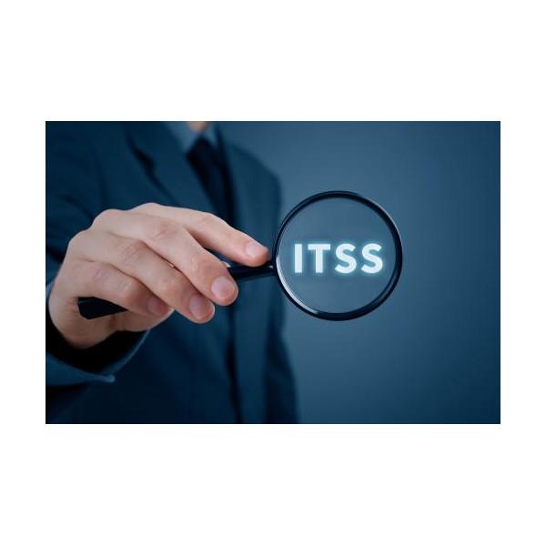 潍坊企业认定ITSS一二三四级有哪些区别