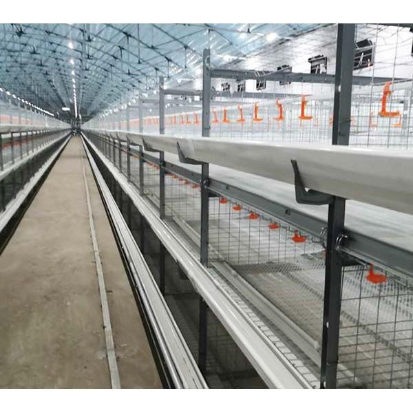 肉鸡养殖设备笼养设备层叠式笼养设备山东金石农牧机械