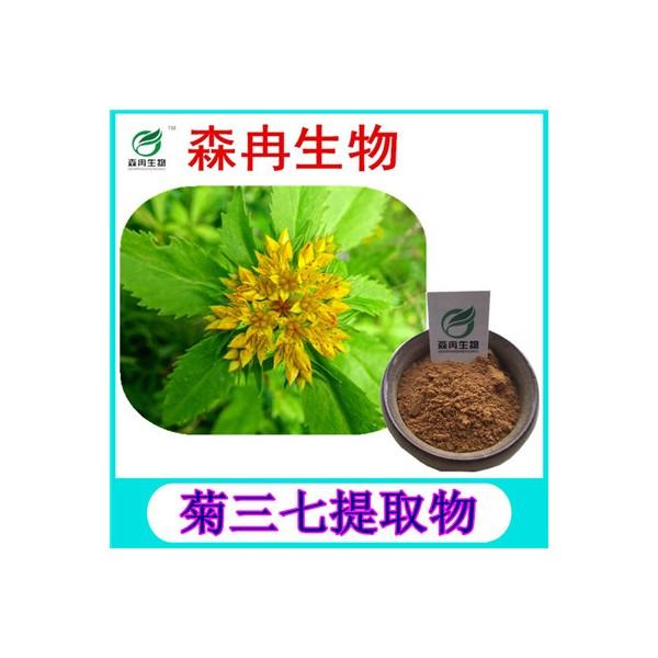 森冉生物 菊三七提取物 费菜提取物 植物提取原料粉