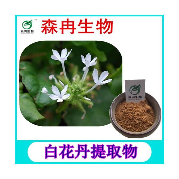 森冉生物 白花丹提取物 假茉莉提取物 植物提取原料粉