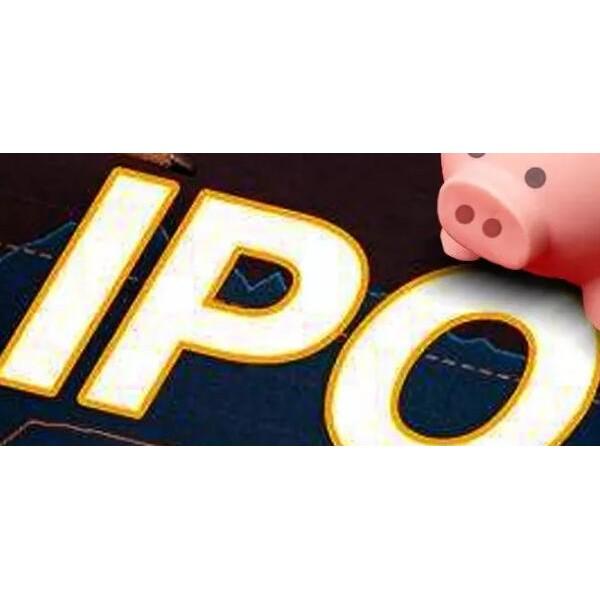 绿专资本:IPO首日涨50% Amplitude成功美国上市